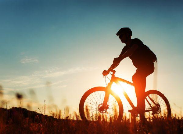 optiswiss-mountain-bike